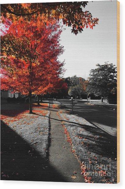 Fiery Fall Trees, Part 1 Wood Print by JMerrickMedia