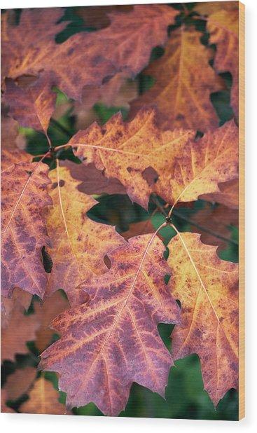 Fall Flames Wood Print