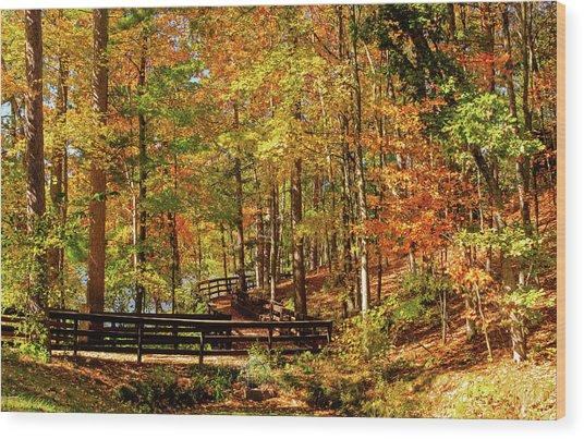 Fall Hike At Mirror Lake Wood Print