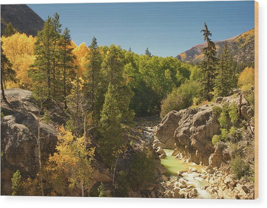 Fall On Independence Pass Wood Print