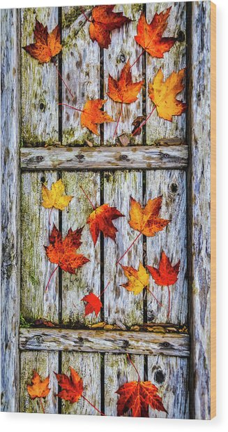 Fallen Leaves On Wooden Walkway Wood Print