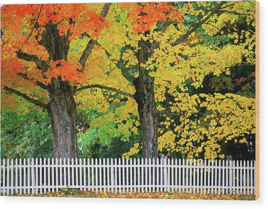 Falls Colors In New Hampshire Wood Print by Great Art Productions