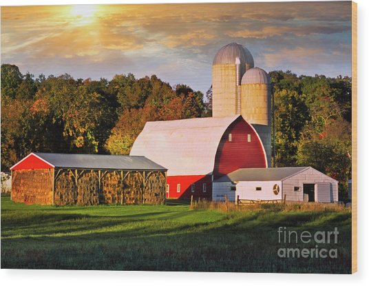Wood Print featuring the photograph Family Farm by Scott Kemper
