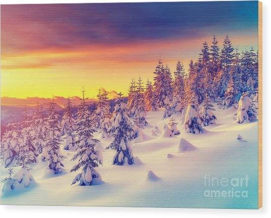 Fantastic Evening Landscape Glowing By Wood Print