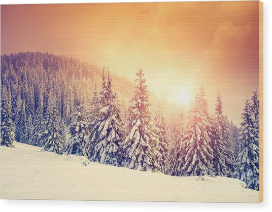 Fantastic Evening Landscape In A Wood Print