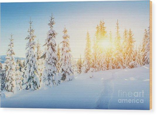 Fantastic Winter Landscape And Worn Wood Print