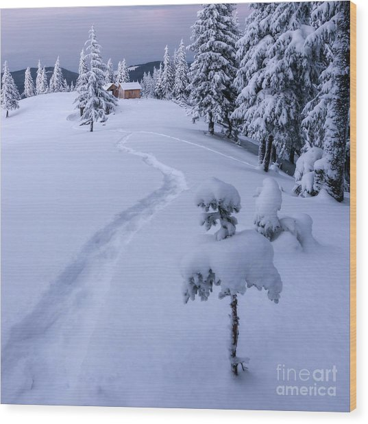 Fantastic Winter Landscape With Snowy Wood Print