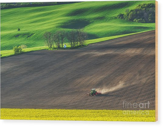 Farm Tractor Handles Earth On Field - Wood Print