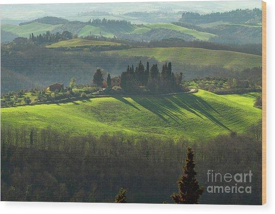 Farmland In Le Crete Senesi, Tuscany-1 Wood Print