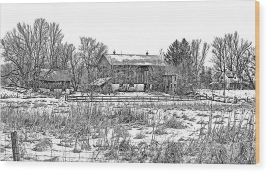 February Farm Bw  Wood Print
