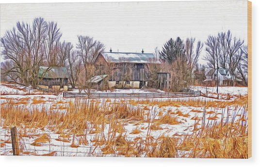 February Farm - Paint Wood Print