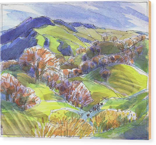 February Landscape With Mount Diablo Wood Print