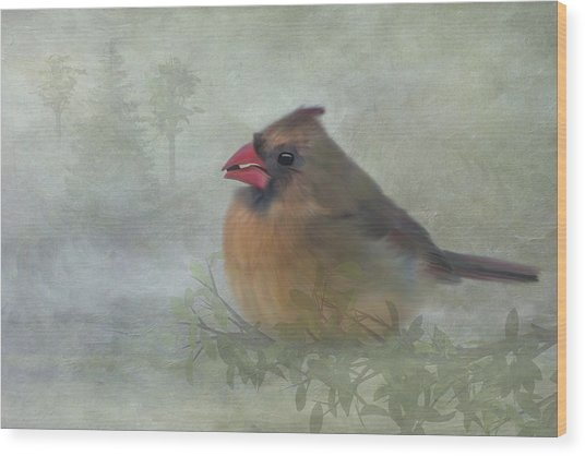 Female Cardinal With Seed Wood Print