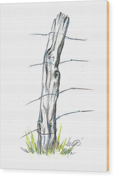 Fence Post Colored Pencil Sketch  Wood Print