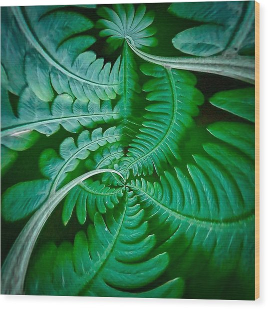 Fern Dance Wood Print