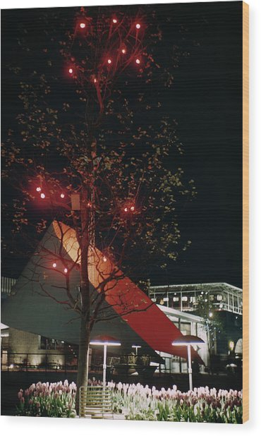Festival Lights Wood Print by Raymond Kleboe
