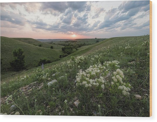 Wood Print featuring the photograph Finally, Spring by Scott Bean