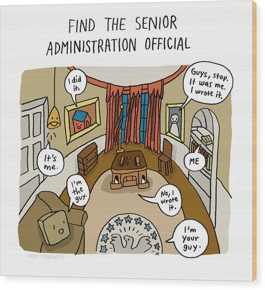 Find The Senior Administration Official Wood Print