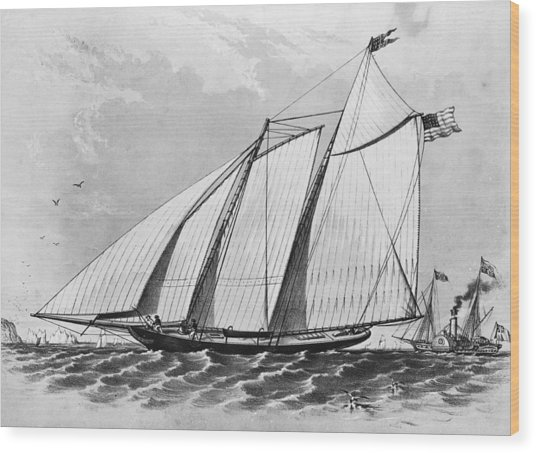First Americas Cup Wood Print by Hulton Archive