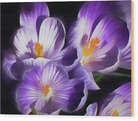 Wood Print featuring the mixed media First Crocuses On The Sunny Side Of The Street by Lynda Lehmann