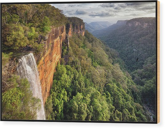 Fitzroy Falls Southern Highlands Nsw Wood Print by Australian Land, City, People Scape Photographer