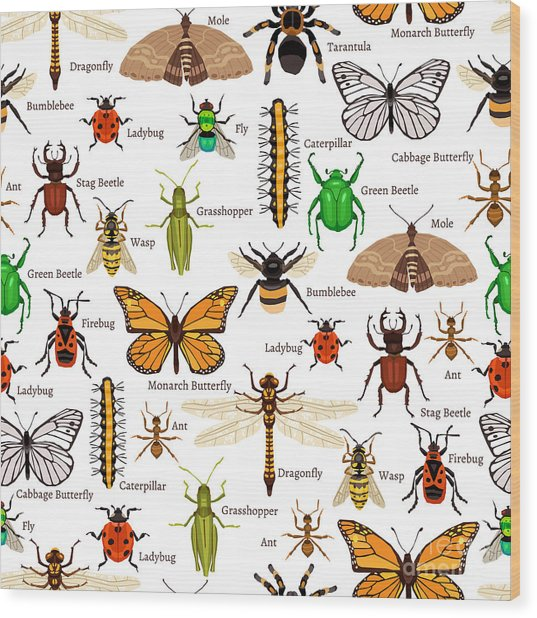 Flat Insects Seamless Pattern Vector Wood Print