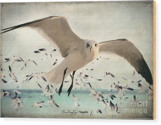 Flight Of The Gulls Wood Print
