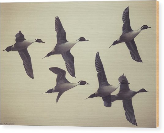 Flight Wood Print