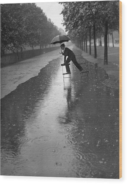 Flooded Mall Wood Print by H. F. Davis