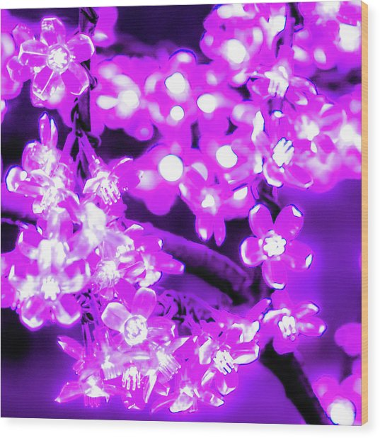 Flower Lights 2 Wood Print