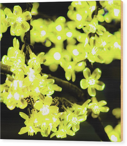 Flower Lights 6 Wood Print