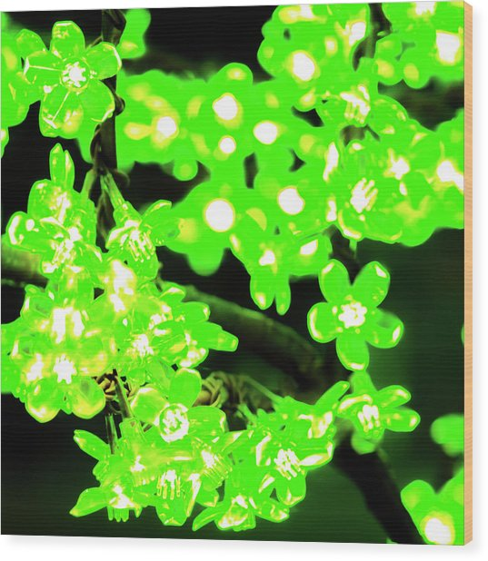 Flower Lights 7 Wood Print