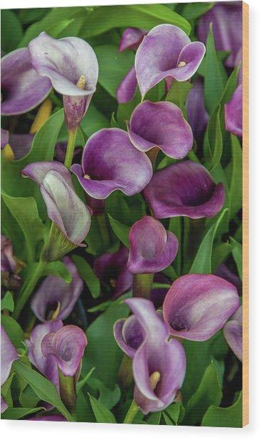 Flower Patterns Collection Set 08 Wood Print