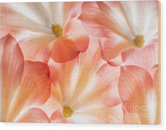 Flowers In Detail - Macro Texture Wood Print