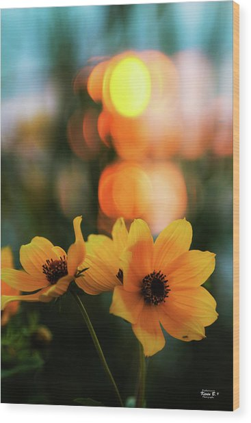 Flowery Bokeh Sunset Wood Print