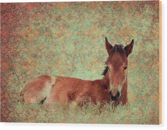 Flowery Foal Wood Print