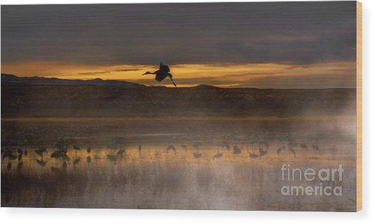 Flying Over Crane Pond Wood Print
