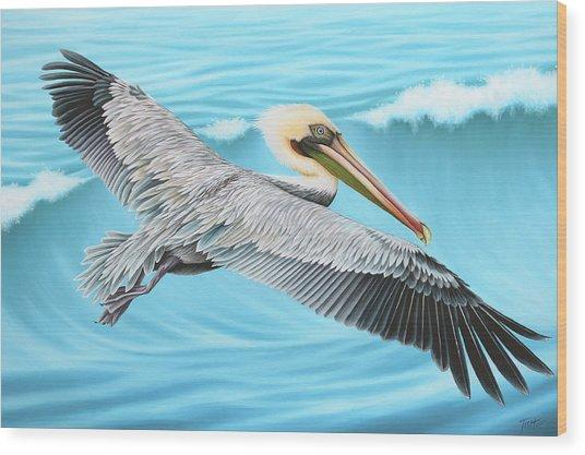 Flying Pelican Wood Print