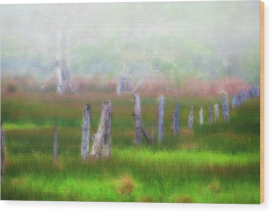 Foggy Dreams Wood Print