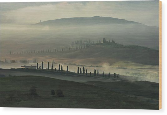 Foggy Fields Of Toskany Wood Print