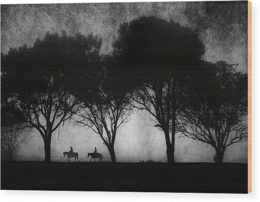 Foggy Morning Ride Wood Print