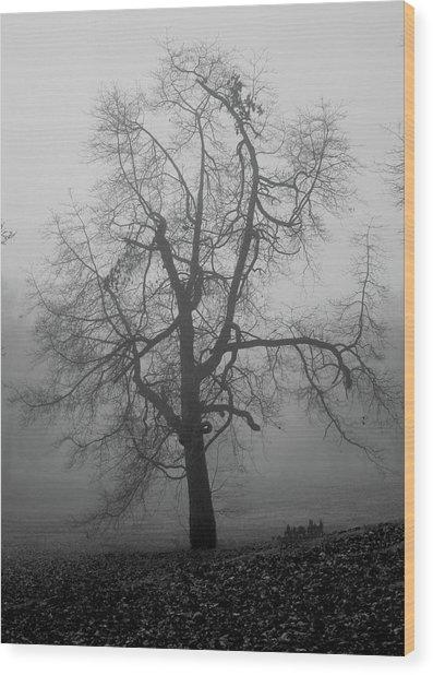 Foggy Tree In Black And White Wood Print