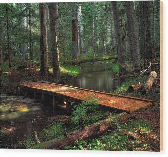 Forest Foot Bridge Wood Print by Leland D Howard