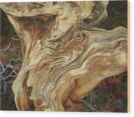 Wood Print featuring the mixed media Forest Music 2 by Lynda Lehmann