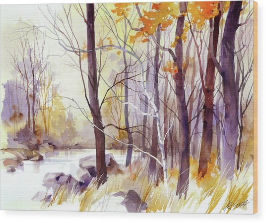 Forest Pond Wood Print by Art Scholz