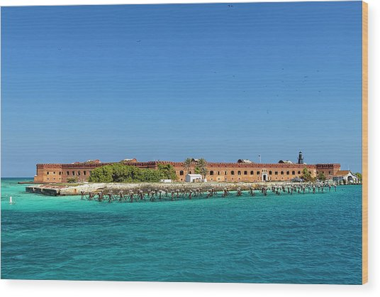 Fort Jefferson, Dry Tortugas National Park Wood Print