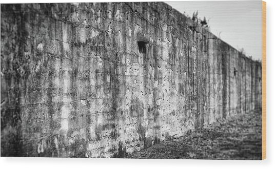 Wood Print featuring the photograph Fortification by Steve Stanger