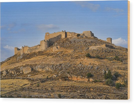 Fortress Larissa Wood Print