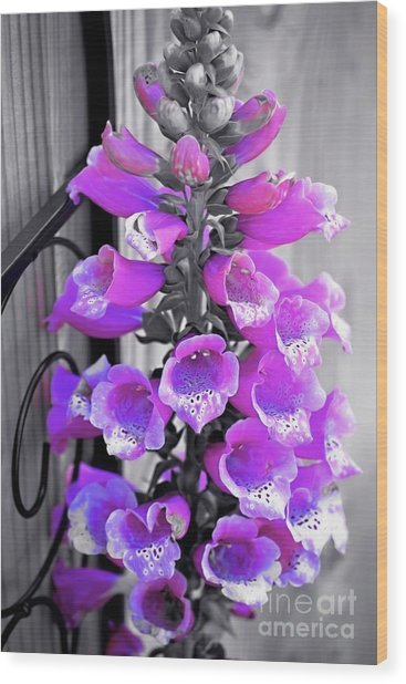 Wood Print featuring the photograph Foxglove by Patti Whitten