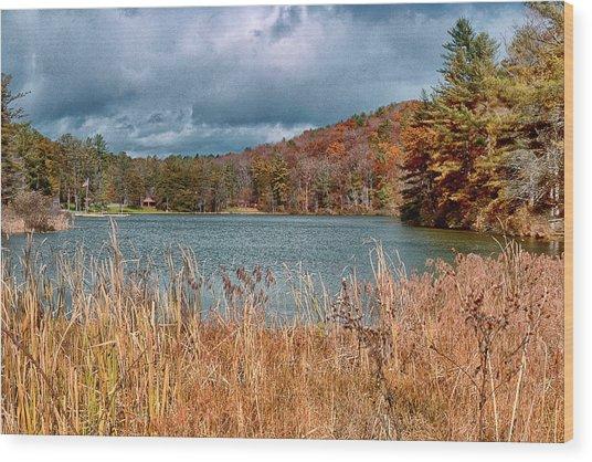 Framed Lake Wood Print